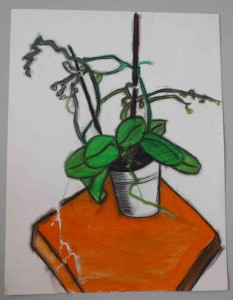 dessin au pastel de la nature morte, Guy (11 ans)